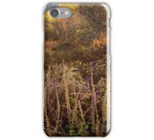 Green Mountain Dawn iPhone Case/Skin