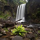 Hopetoun Falls by Alex Wise