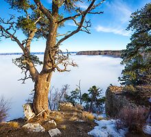 Rare grand Canyon puffy fog by Jerome Obille