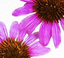 Echinacea Flower Abstract Impressionism by pjwuebker