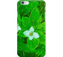Bunchberry Flower Abstract Impressionism iPhone Case/Skin