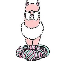 Cute pink lama with yarn by picbykate