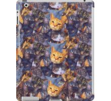 Cat Lady iPad Case/Skin
