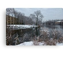 Winter In New Jersey Canvas Print
