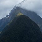 Mitre Peak - Milford Sound  by Barbara Burkhardt