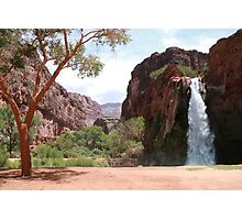 Waterfall Canyon Photographic Print