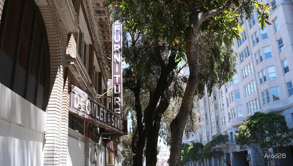 City of San Francisco by Arod28
