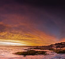 Coffs Habour  by dan  stewart