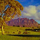 Mt Roland, Tasmania by Michael John