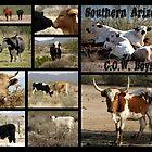 Southern Arizona C.O.W. Boys by Kimberly Chadwick