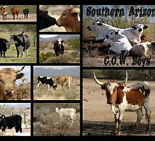 Southern Arizona C.O.W. Boys by Kimberly Chadwick