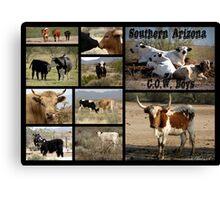 Southern Arizona C.O.W. Boys Canvas Print