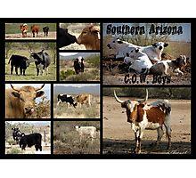 Southern Arizona C.O.W. Boys Photographic Print