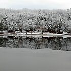 Winter Reflection by joycemlheureux