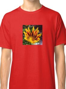 A Partially Opened Yellow and Burgundy Petal Gazania Classic T-Shirt