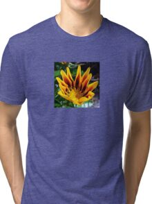A Partially Opened Yellow and Burgundy Petal Gazania Tri-blend T-Shirt