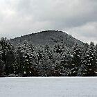 Snowy Mountain by joycemlheureux