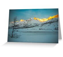 Sunset fire Greeting Card