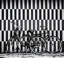 Salt & Pepper - Bicycles in Copenhagen by Tania Sonnenfeld