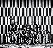 Salt & Pepper - Bicycles in Copenhagen by Tania Sonnenfeld