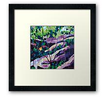 Figbird Framed Print