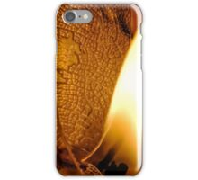 Counting Rivers iPhone Case/Skin