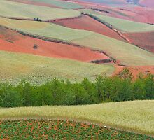 Red Land 04 by jasonksleung