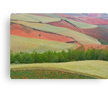 Red Land 04 Canvas Print
