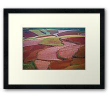 Red Land 08 Framed Print