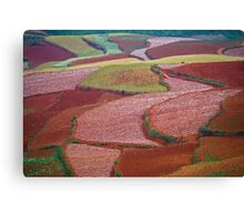 Red Land 08 Canvas Print