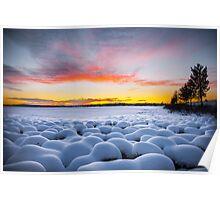 Marshmallows at dawn Poster