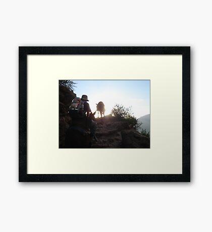 Hard Slog Framed Print