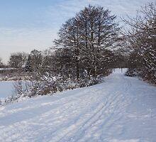 A Pale Blue Snowday  by Georgia Mizuleva