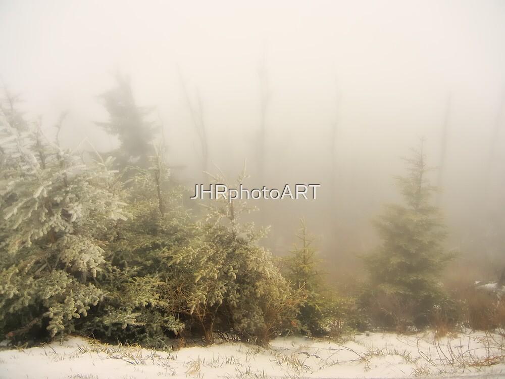 Winter Fog - Great Smoky Mountains  by JHRphotoART