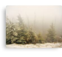 Winter Fog - Great Smoky Mountains  Canvas Print