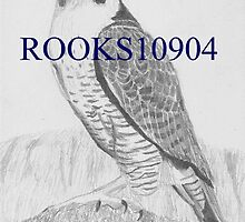 Peregrine Falcon BIRD OF PREY ART PRINT by rooks10904