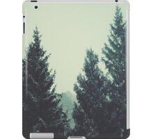 Canadian iPad Case/Skin