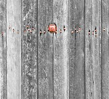 Railroad Wood Texture and Red Bolts BWSC by Bo Insogna