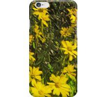 Arrowleaf Balsamroot Flower Abstract Impressionism iPhone Case/Skin