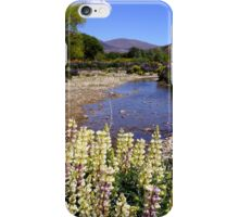 Beautiful Southland New Zealand iPhone Case/Skin
