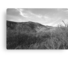 Tumble In The Weeds Canvas Print