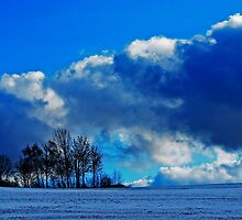 Winter in the Black Forest by Imi Koetz
