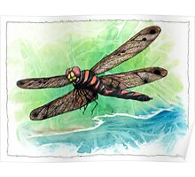 Dragonfly Notes Poster