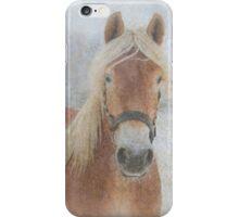 Winter Horse  - JUSTART © iPhone Case/Skin