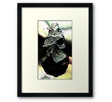 One View Of The Olduvai Gorge Framed Print