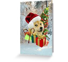 Many Holidays Greeting Card