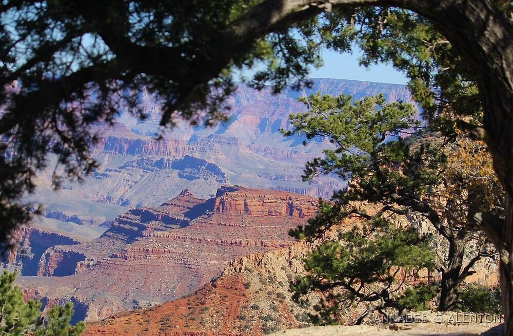 the grand canyon by ANNABEL   S. ALENTON