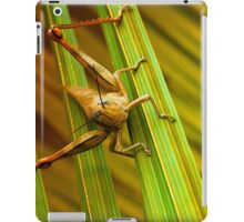 Hang on there 01 iPad Case/Skin