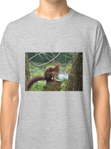 Red Squirrel .......... Classic T-Shirt