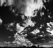 ©HCS Walk On The Wild Side LRTII by OmarHernandez